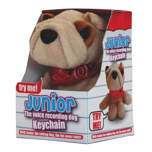 Junior The Voice Recording Keychain