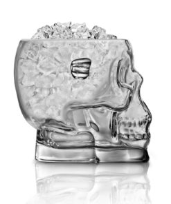 Skull Brain Freeze Ice Bucket