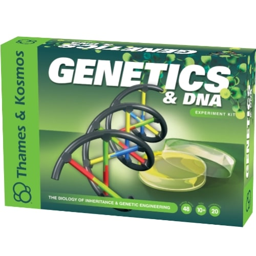 Genetics & DNA