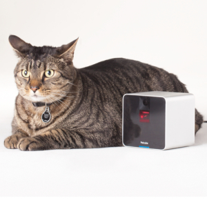 Petcube - Remote Wireless Pet Camera | Pet Monitor System
