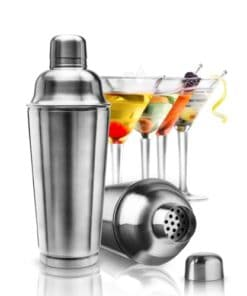 Professional Cocktail Shaker