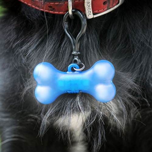 Blink Petz LED Dog Collar Light – Blue