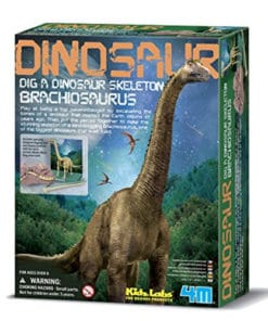 Dig a Brachiosaurus Kit
