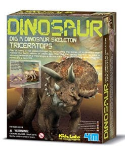 Dig a Triceratops Kit