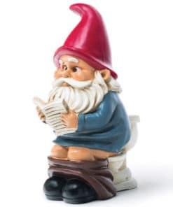 Gnome on the Throne Garden Gnome