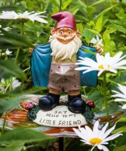 Perverted Garden Gnome