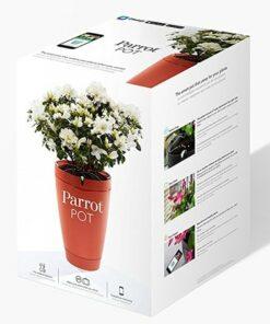Parrot Pot – Brick Red