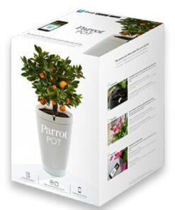 Parrot Pot – White