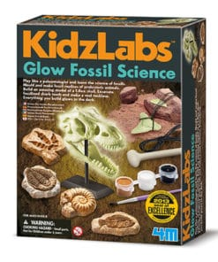 Glow Fossil Science Kit (3356)
