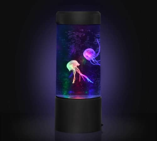 Mini Jellyfish Tank