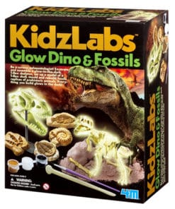 Glow Dino and Fossils Kit