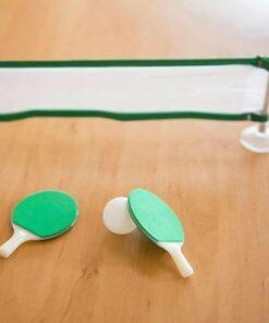 Worlds Smallest Table Tennis Set