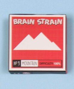 Brain Strain Puzzle - 3 Pack