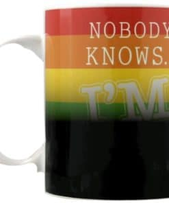 Nobody Knows Im Gay Heat Changing Mug